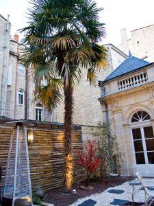 hotel-quinconces-bordeaux-degustation-biere-palmier