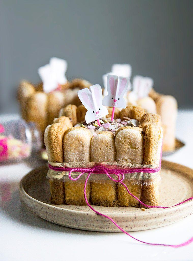 charlotte-chocolat-paques-agathe-duchesne-blog-recette-3