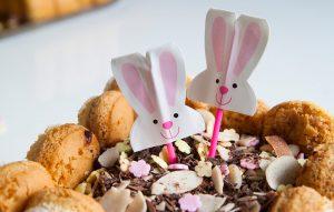 charlotte-chocolat-paques-agathe-duchesne-blog-recette-6