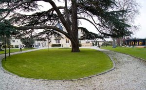 pape-clement-concert-virgin-radio-jardin-agathe-duchesne4