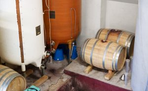 chateau-scylla-vin-vignoble-bordeaux-agathe-duchesne-blog-agatwe-chai