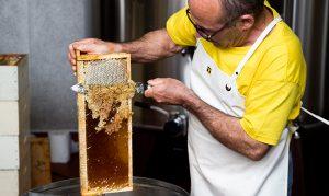 chateau-larose-trintaudon-medoc-agathe-duchesne-blog-vin-miel