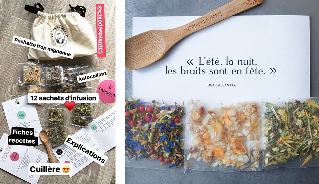 chic-des-plantes-muffin-raisin-agathe-duchesne-blog-rennes-colis