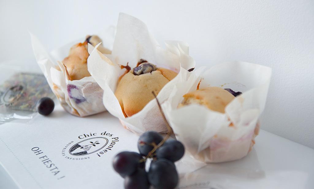 chic-des-plantes-muffin-raisin-agathe-duchesne-recette-rennes-blog