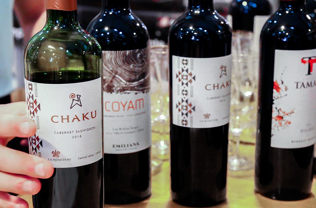 salon-vins-gastronomie-rennes-2017-agathe-duchesne-vignoble-chili