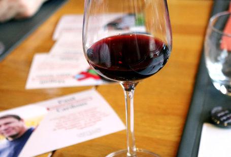 jirai-deguster-chez-vous-castillon-bordeaux-agathe-duchesne-blog-vin-rouge
